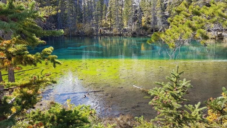02 gressi lake canmore