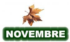 11-novembre-1.jpg