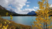 11 waterfawl lake 1