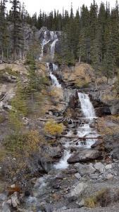 19 tangle creek