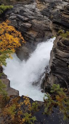 26 athabasca falls