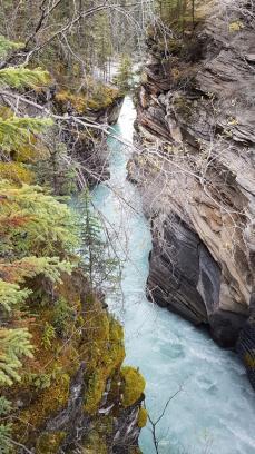 27 athabasca falls
