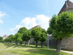 Bourgogne 14