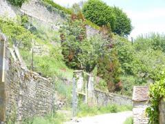 Bourgogne 24b