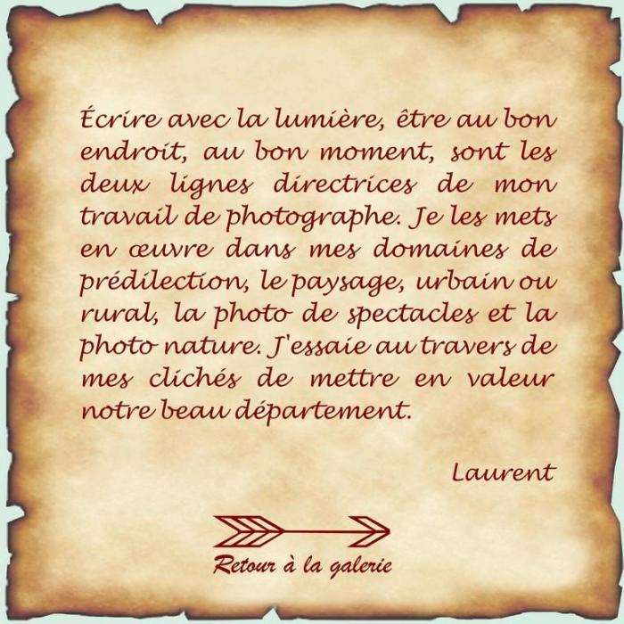 Laurent mot de l artiste