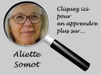 Somot 5