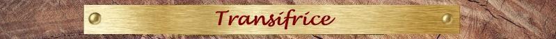 Transifrice